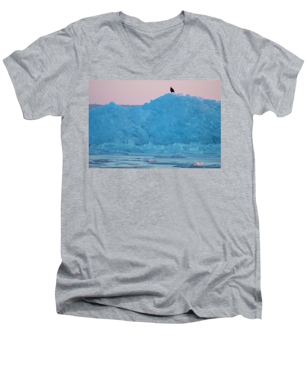 Eagle Men's V-Neck T-Shirt featuring the photograph Eagle On Ice Mackinaw City 2261803 by Rick Veldman
