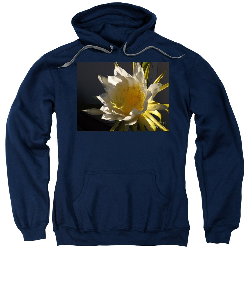 Dragon Fruit Sweatshirt featuring the photograph Dragon Fruit Blossom In Profile by Jussta Jussta