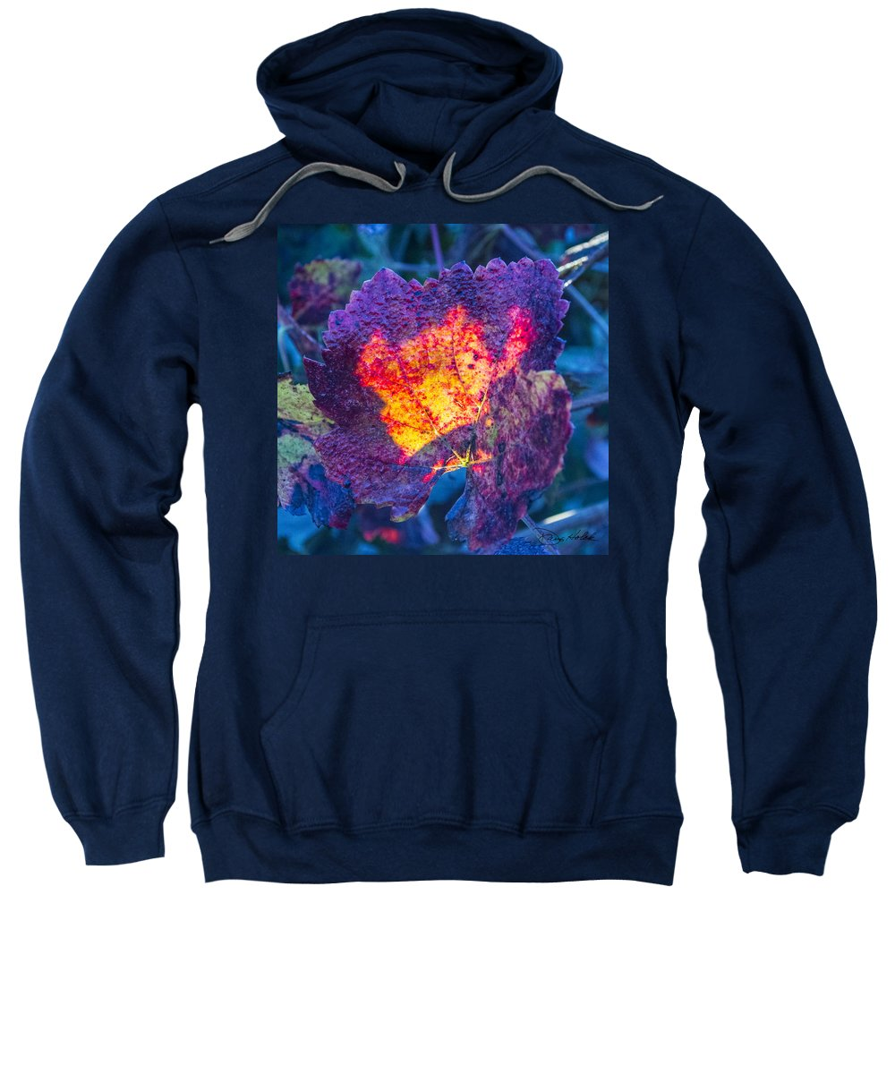 Fall Sweatshirt featuring the photograph Fall Flame by Doug Holck