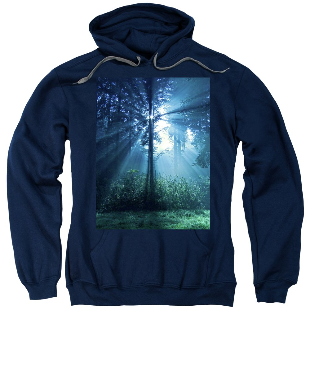 Nature Sweatshirt featuring the photograph Magical Light by Daniel Csoka