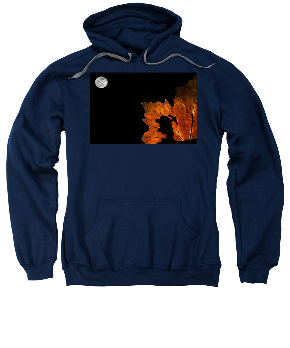 Dwarf Sweatshirt featuring the photograph 131114p321 by Arterra Picture Library