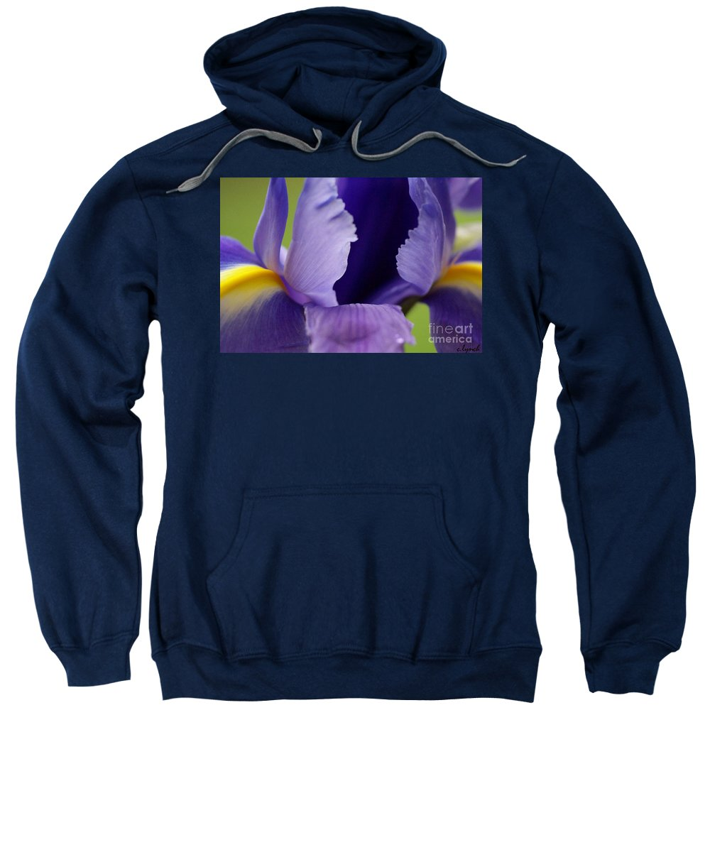 Purple Sweatshirt featuring the photograph Purple by Carol Lynch