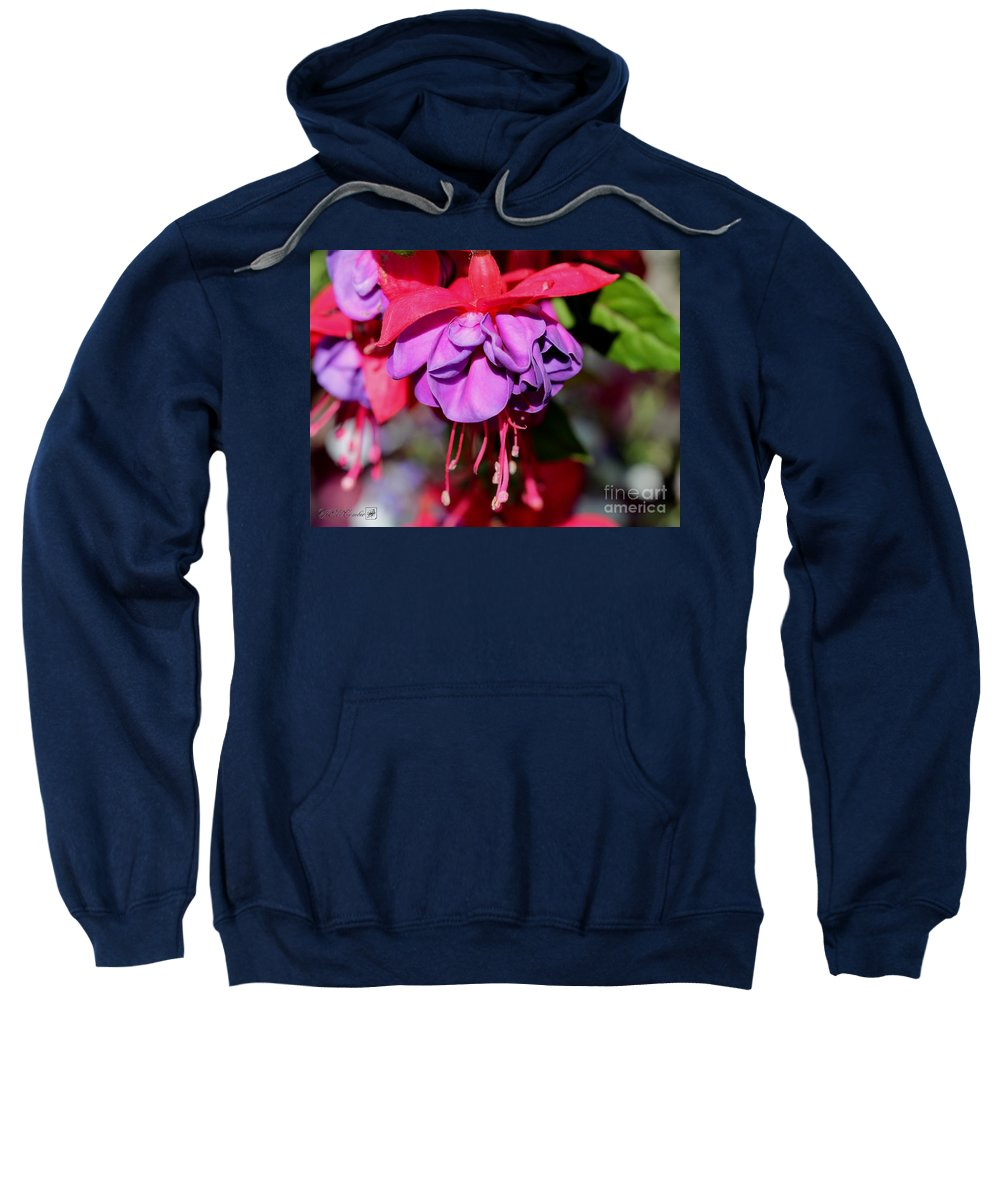 Mccombie Sweatshirt featuring the photograph Fuchsia Named Dark Eyes by J McCombie