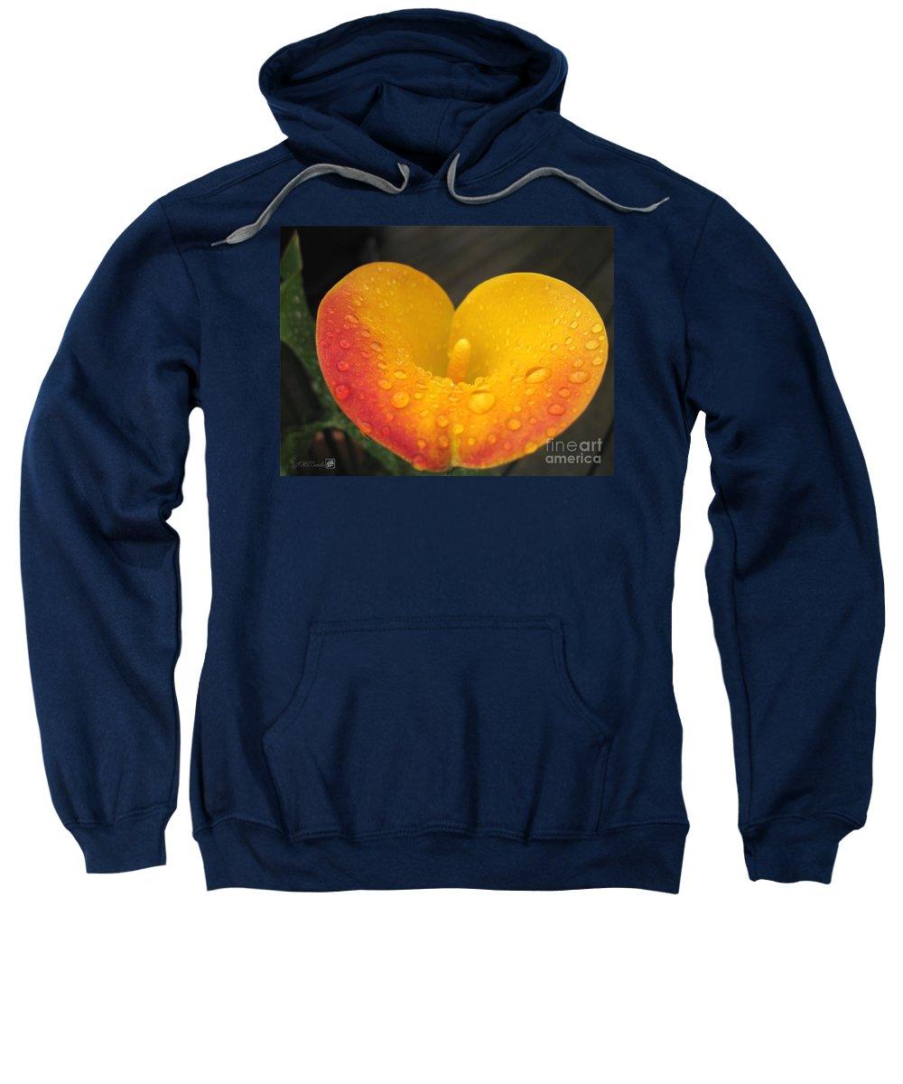Zantedeschia Sweatshirt featuring the photograph Zantedeschia Named Flame by J McCombie