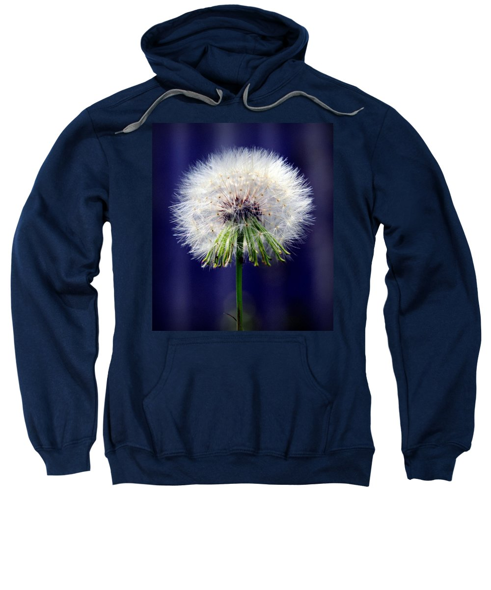 Dandelions Sweatshirt featuring the photograph A Childs First Wish by Karen Wiles