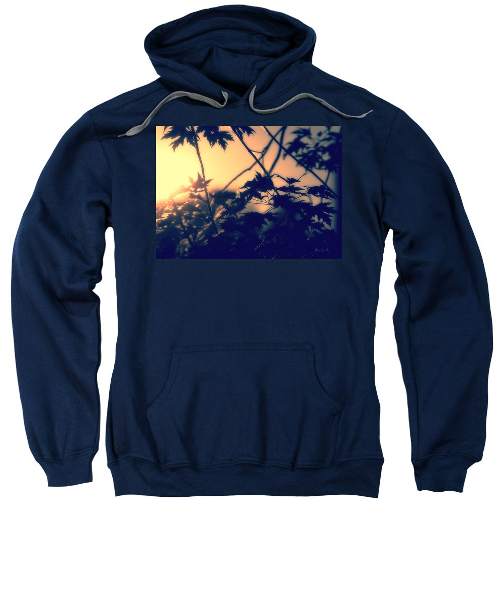 August Sweatshirt featuring the photograph August Memories by Bob Orsillo