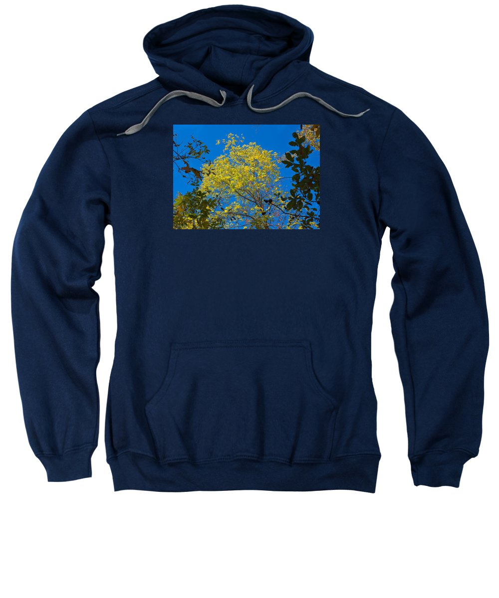 Sky Sweatshirt featuring the photograph Autumn Colors Against The Sky by John M Bailey