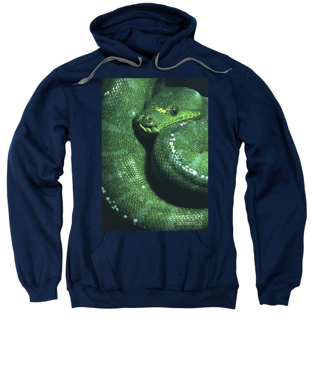 Snake Sweatshirt featuring the photograph Big Green Eating Machine by Paul W Faust - Impressions of Light