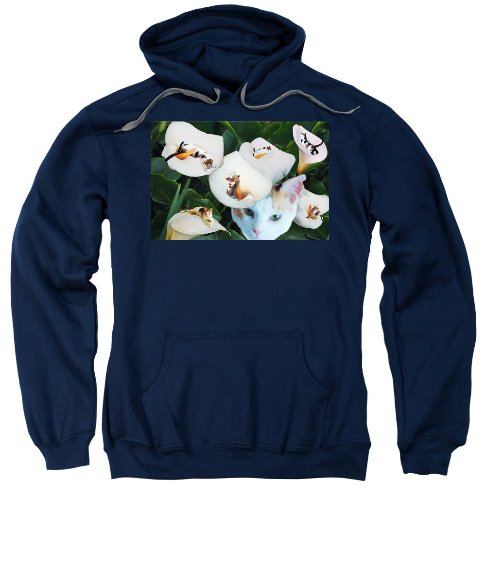 Cat Sweatshirt featuring the digital art Cala In Callas by Lisa Yount