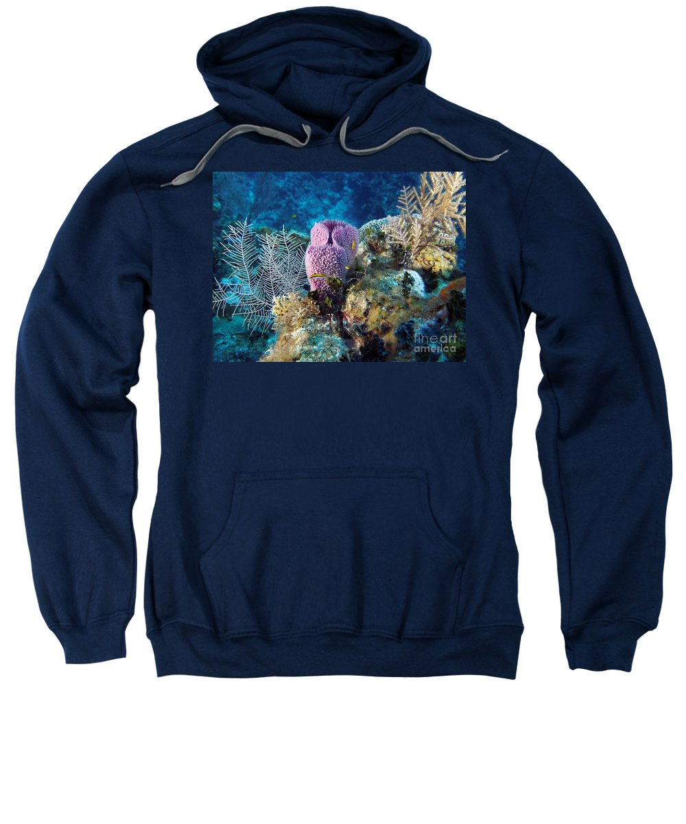 Cayman Sweatshirt featuring the photograph Cayman Reef by Carey Chen