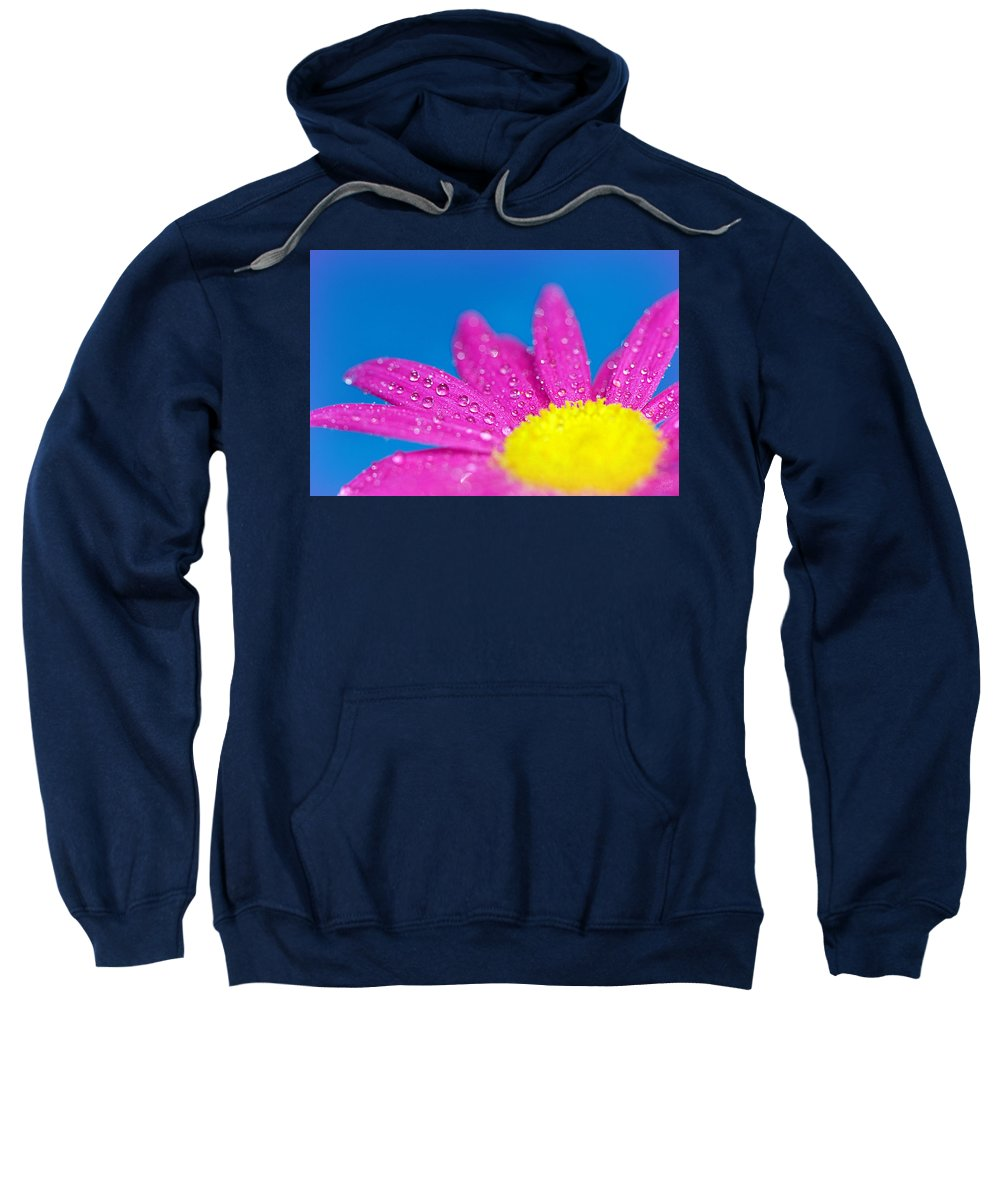 Water Sweatshirt featuring the photograph Celebration A Cacophony Of Colour by Lisa Knechtel