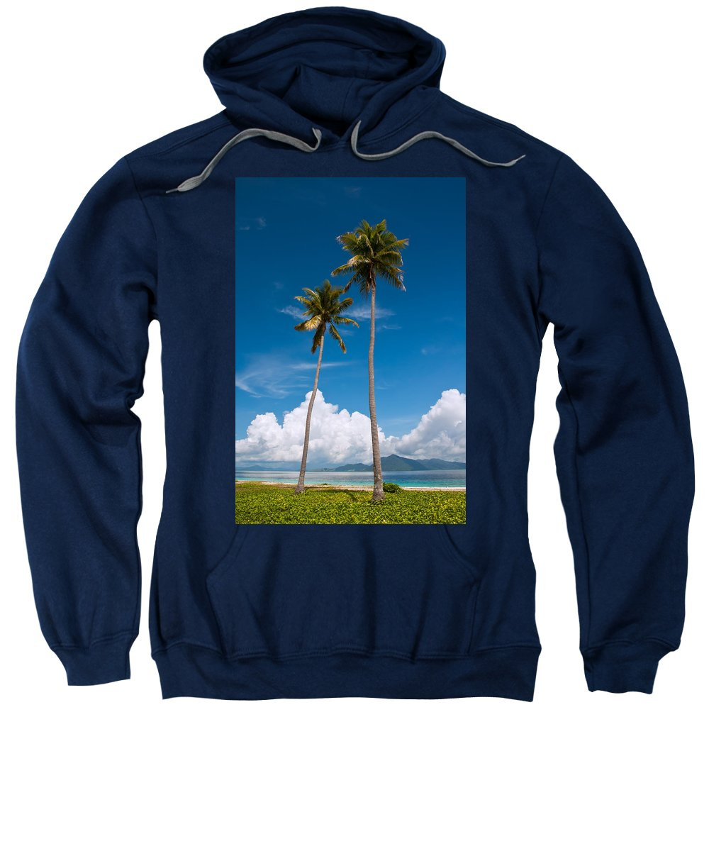 Coconut Sweatshirt featuring the photograph Coconut Trees by Kim Pin Tan