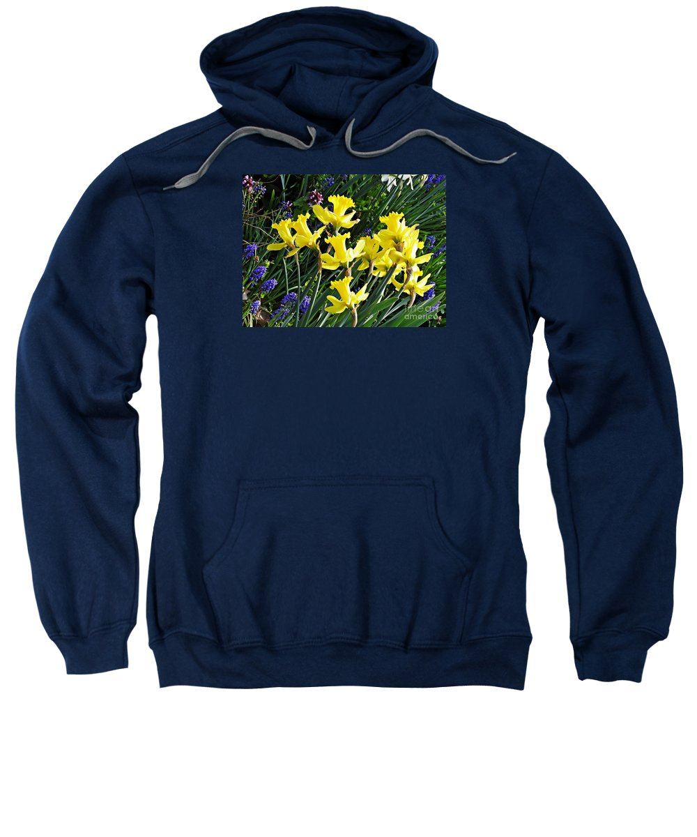 Daffodils Sweatshirt featuring the photograph Daffodils by Sarah Loft