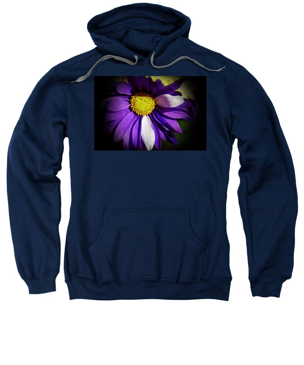 Daisy Sweatshirt featuring the photograph Daisy Power by Aimee L Maher ALM GALLERY