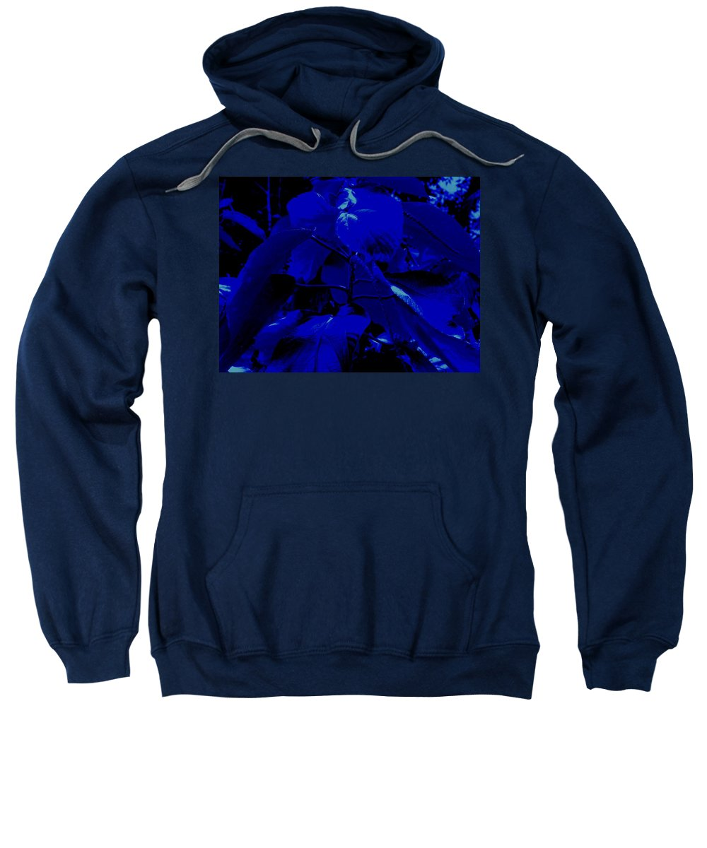 Leaves Sweatshirt featuring the photograph Dark Blue Leaves by Ian MacDonald