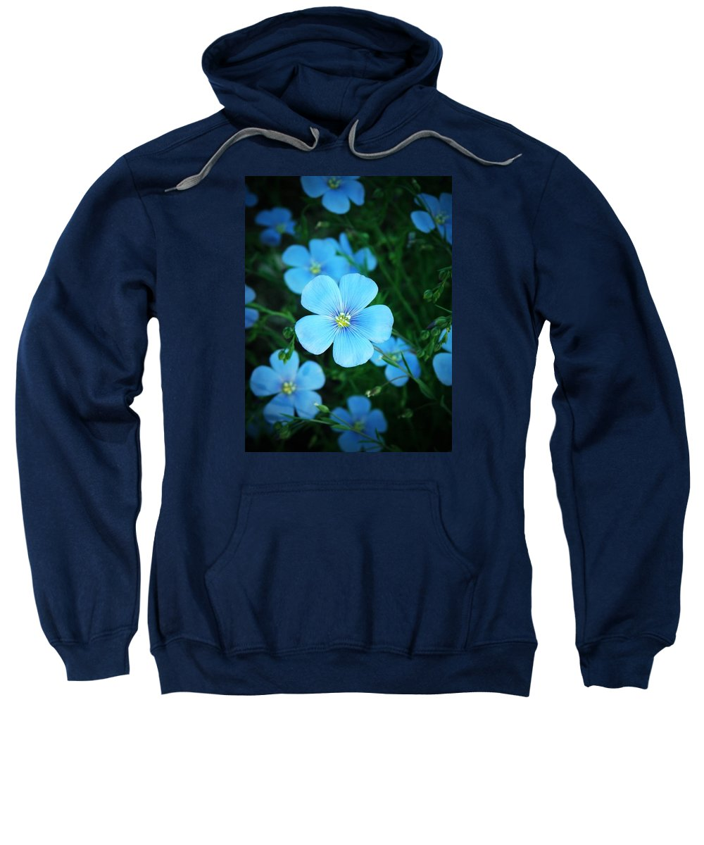Linum Sweatshirt featuring the photograph Delicate by Chris Berry