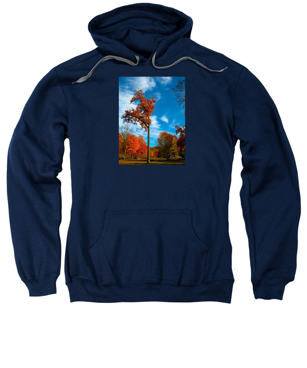 Tree Sweatshirt featuring the photograph Loneliness by Zafer Gurel