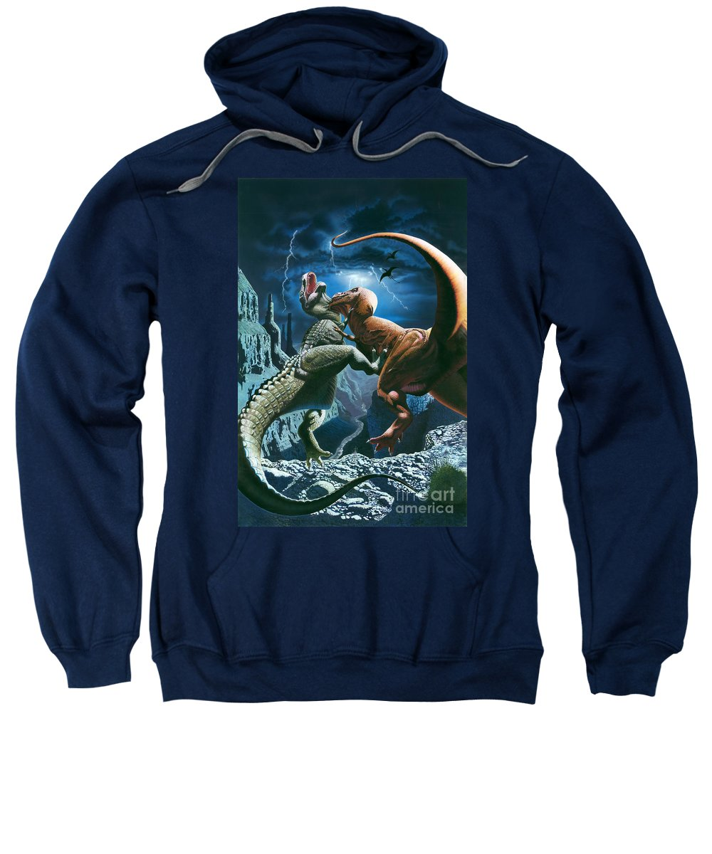 Aggressive Sweatshirt featuring the photograph Dinosaur Canyon by MGL Studio - Chris Hiett