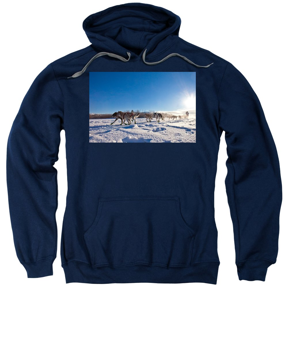 Action Sweatshirt featuring the photograph Dog Team Pulling Sled by Stephan Pietzko