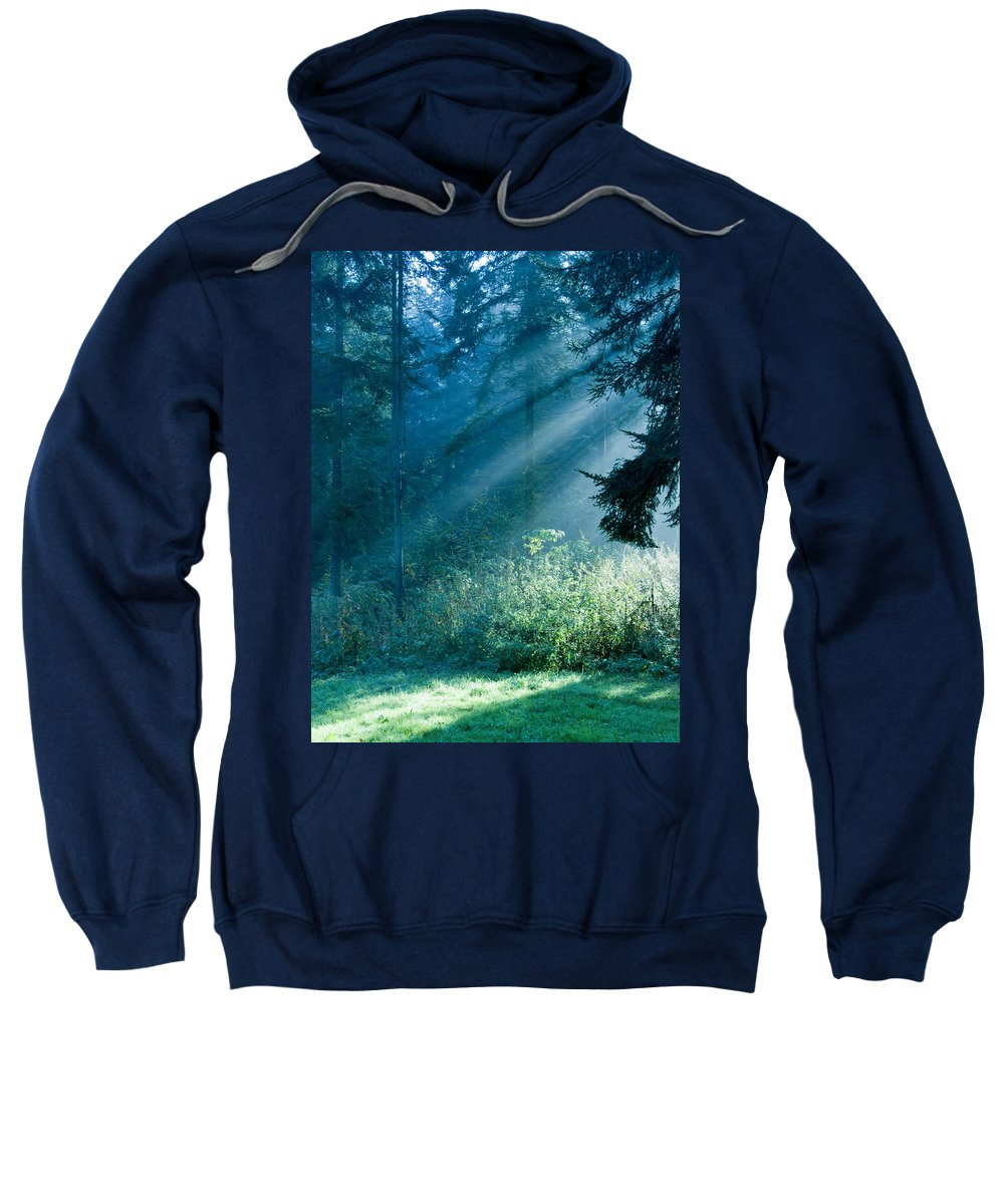 Nature Sweatshirt featuring the photograph Elven Forest by Daniel Csoka
