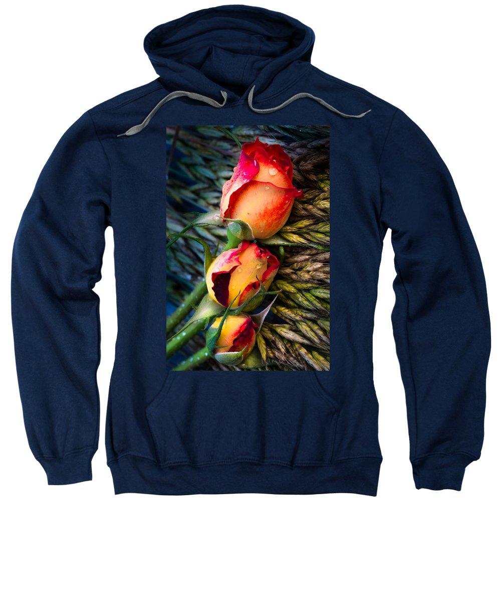 Roses Sweatshirt featuring the photograph For Summer Time 01 by Edgar Laureano
