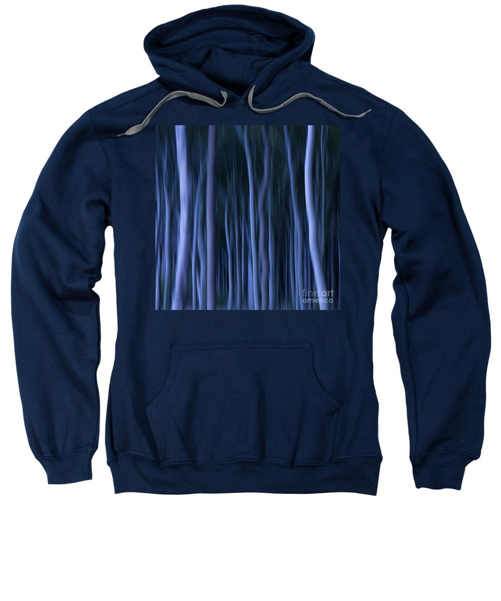 Abstract Sweatshirt featuring the photograph Ghost Forest by Heiko Koehrer-Wagner
