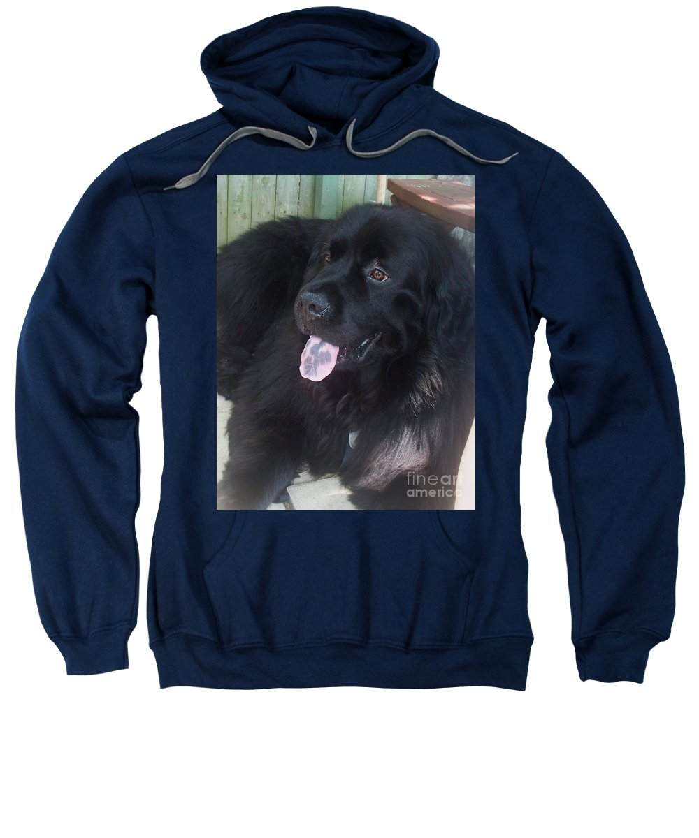 Dog Sweatshirt featuring the photograph Gus Hanging Out by Eric Schiabor