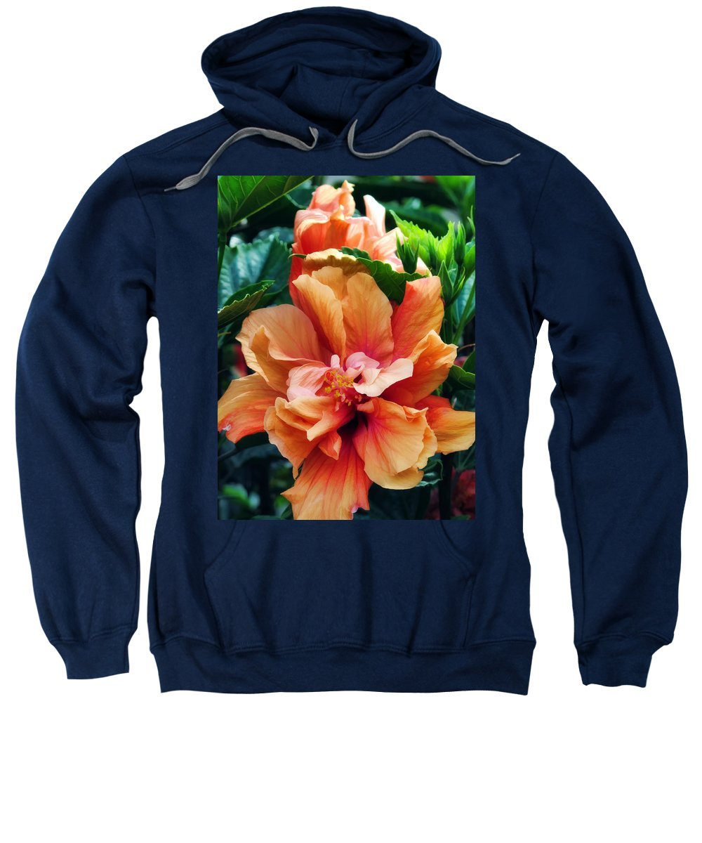 Orange Sweatshirt featuring the photograph Hibiscus 38 by Dawn Eshelman