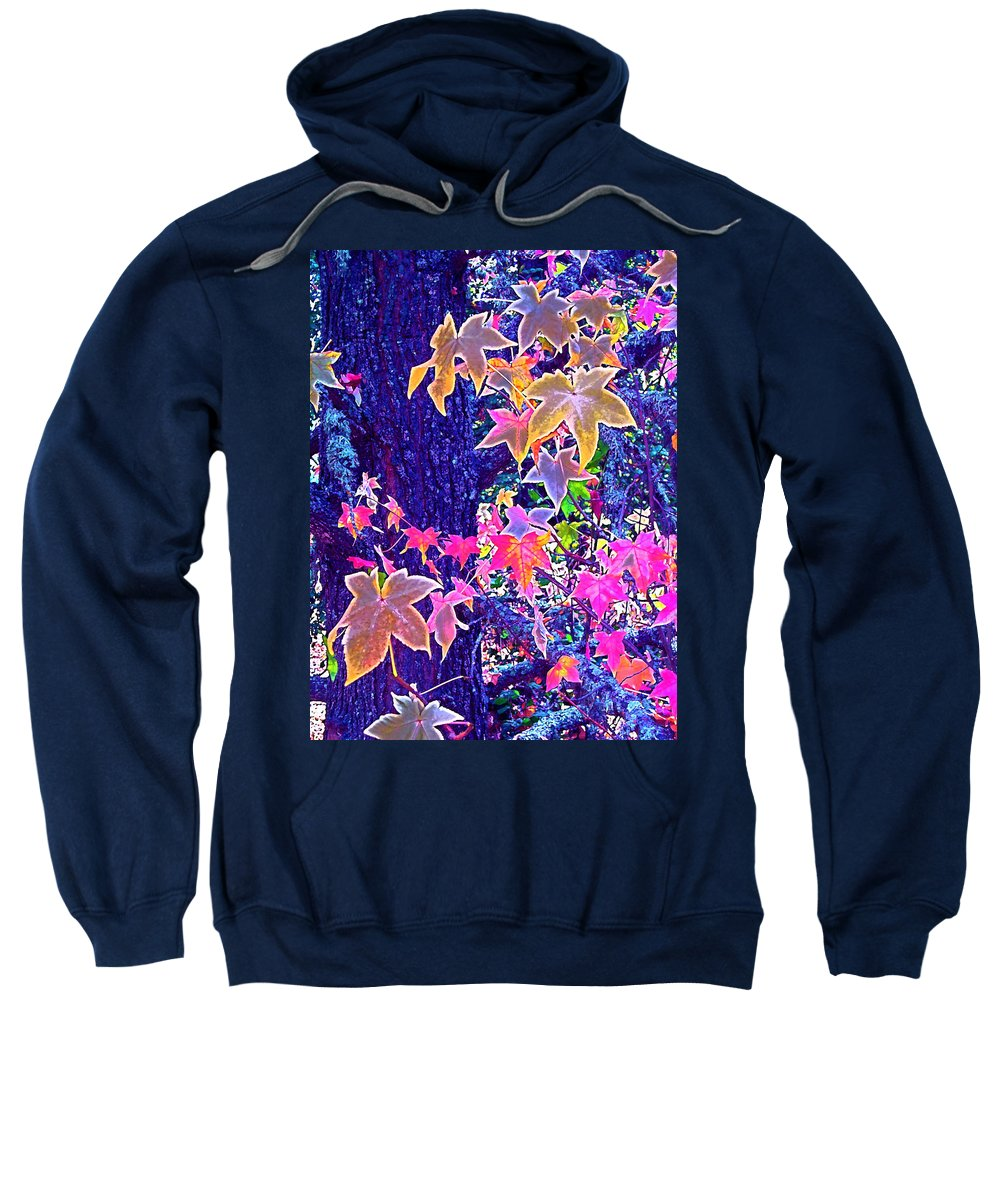 Nature Sweatshirt featuring the photograph Leaves 1 by Pamela Cooper