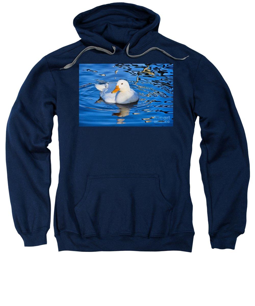 Duck Sweatshirt featuring the photograph Little White Duck by Susie Peek