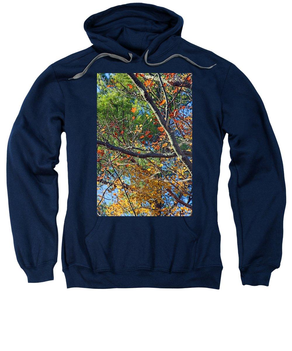 Mixed Sweatshirt featuring the photograph Mixed Season by Munir Alawi
