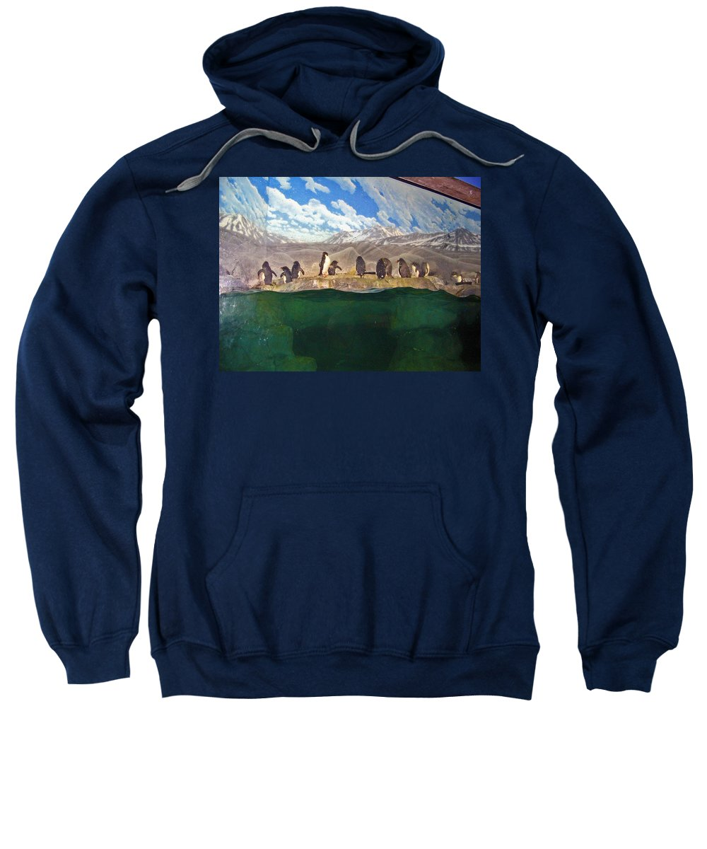 Penguins Sweatshirt featuring the photograph Penguins On Ice by Marian Bell