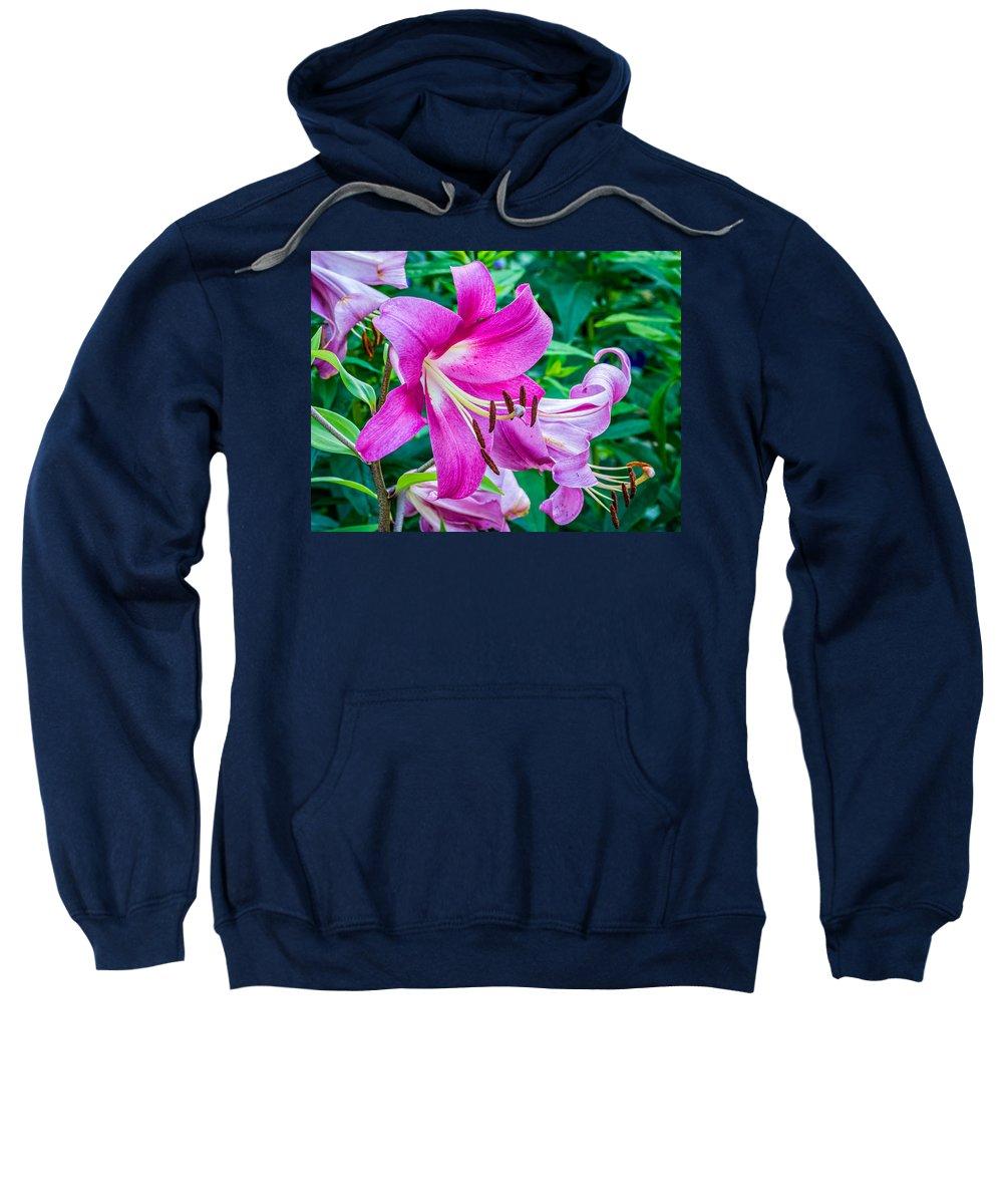 Steve Harrington Sweatshirt featuring the photograph Pink And Sassy 2 by Steve Harrington
