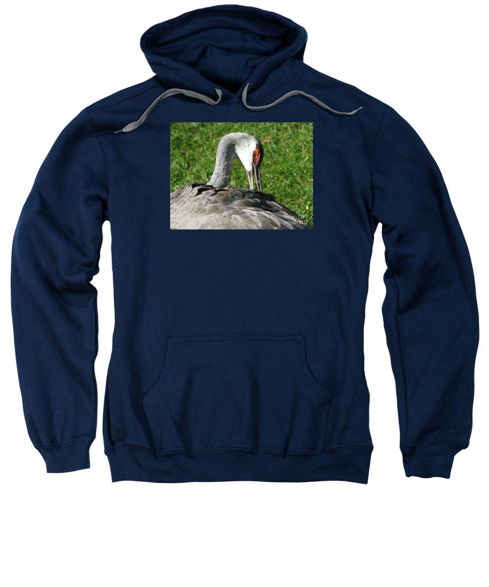 Bird Sweatshirt featuring the photograph Preening Itself by Ann Horn