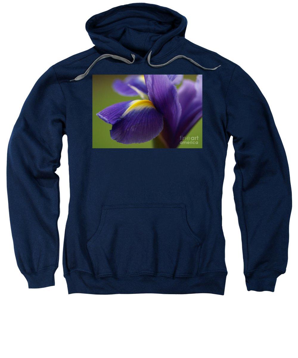 Purple Sweatshirt featuring the photograph Purple Iris 8 by Carol Lynch