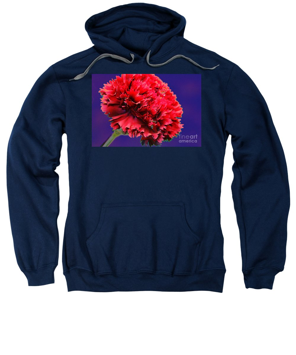 Red Sweatshirt featuring the digital art Red Beauty Carnation by Carol Lynch