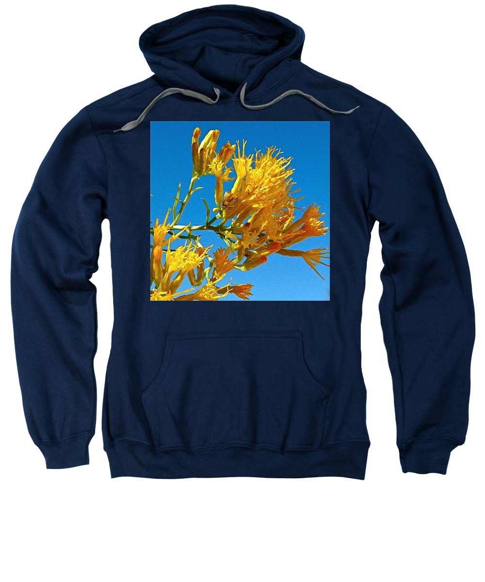 Rubber Rabbitbrush In Off Hole-in-the-rock Road In Grand Staircase-escalante National Monument Sweatshirt featuring the photograph Rubber Rabbitbrush Off Hole-in-the-rock Road In Grand Staircase Escalante National Monument-utah by Ruth Hager