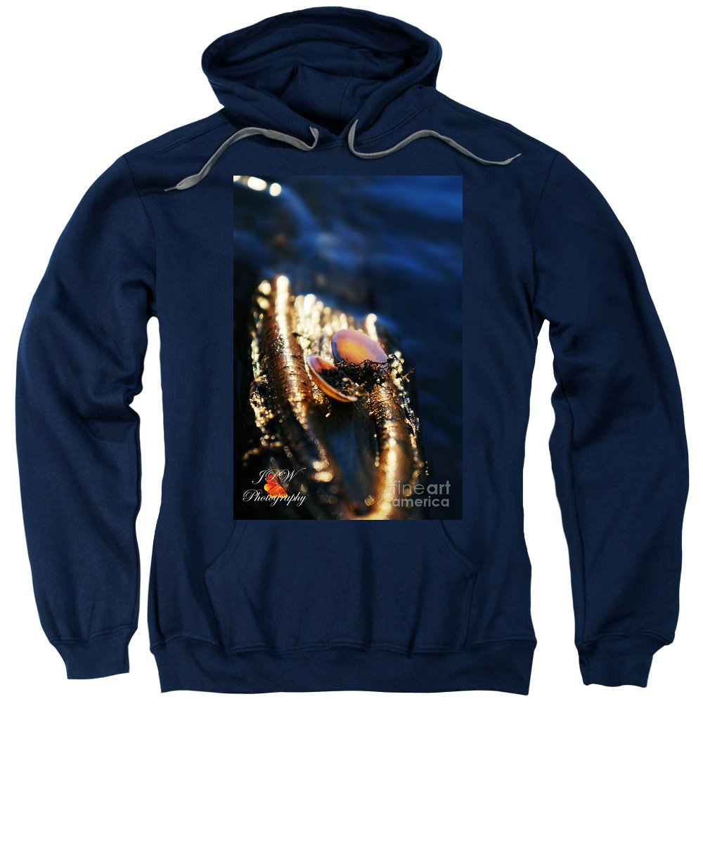 Shells Sweatshirt featuring the photograph Shell By The River by Jannice Walker