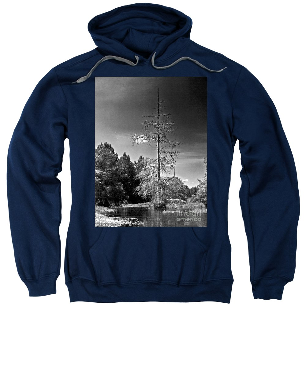Vernon Lake Sweatshirt featuring the photograph Stuck In The Middle  by Ken Frischkorn