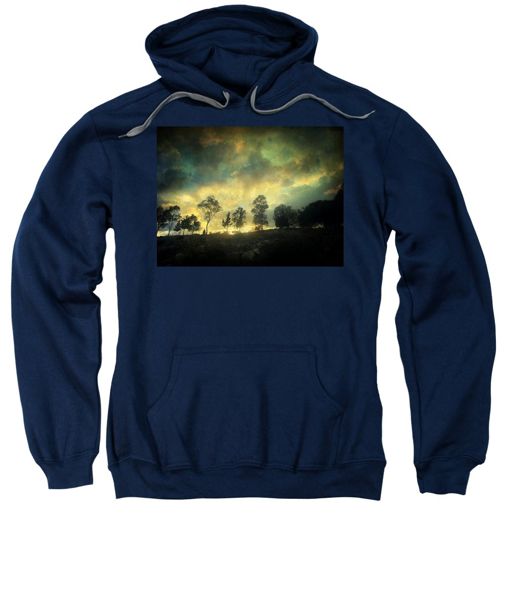 Nature Sweatshirt featuring the photograph Sunset Trip by Zapista