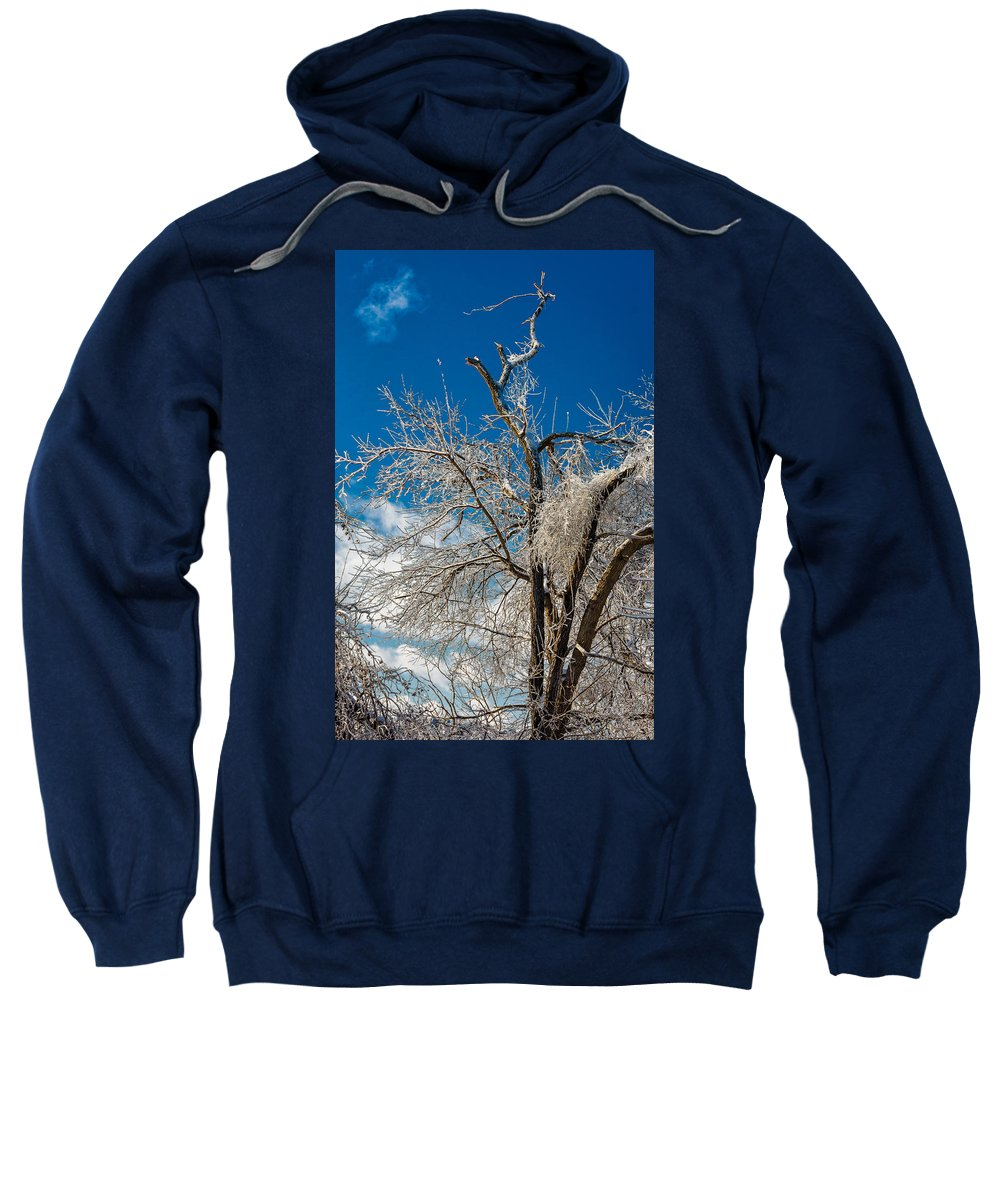 Steve Harrington Sweatshirt featuring the photograph Survivor by Steve Harrington