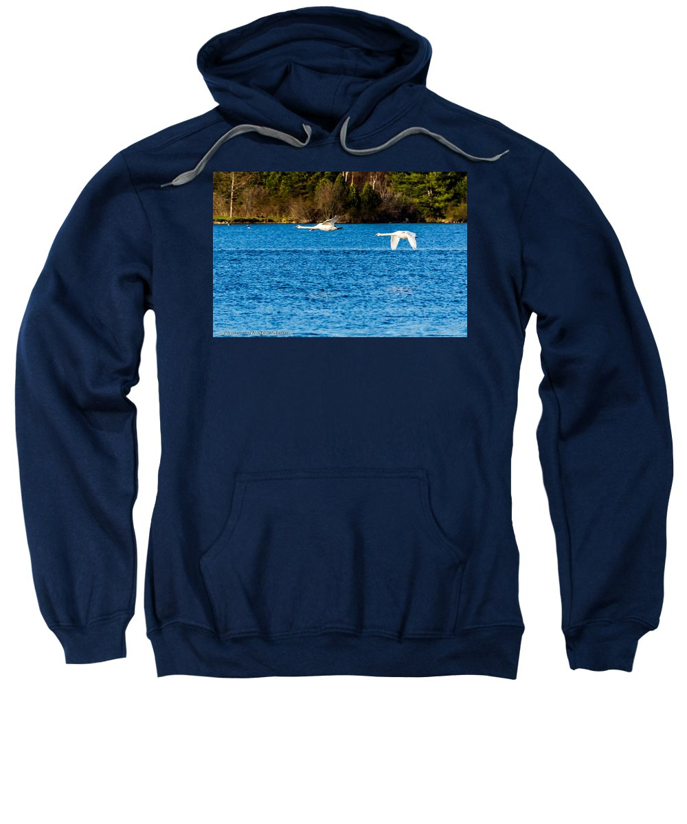 Mute Swan Sweatshirt featuring the photograph Swans In Flight - Unity Park by Nate Wilson