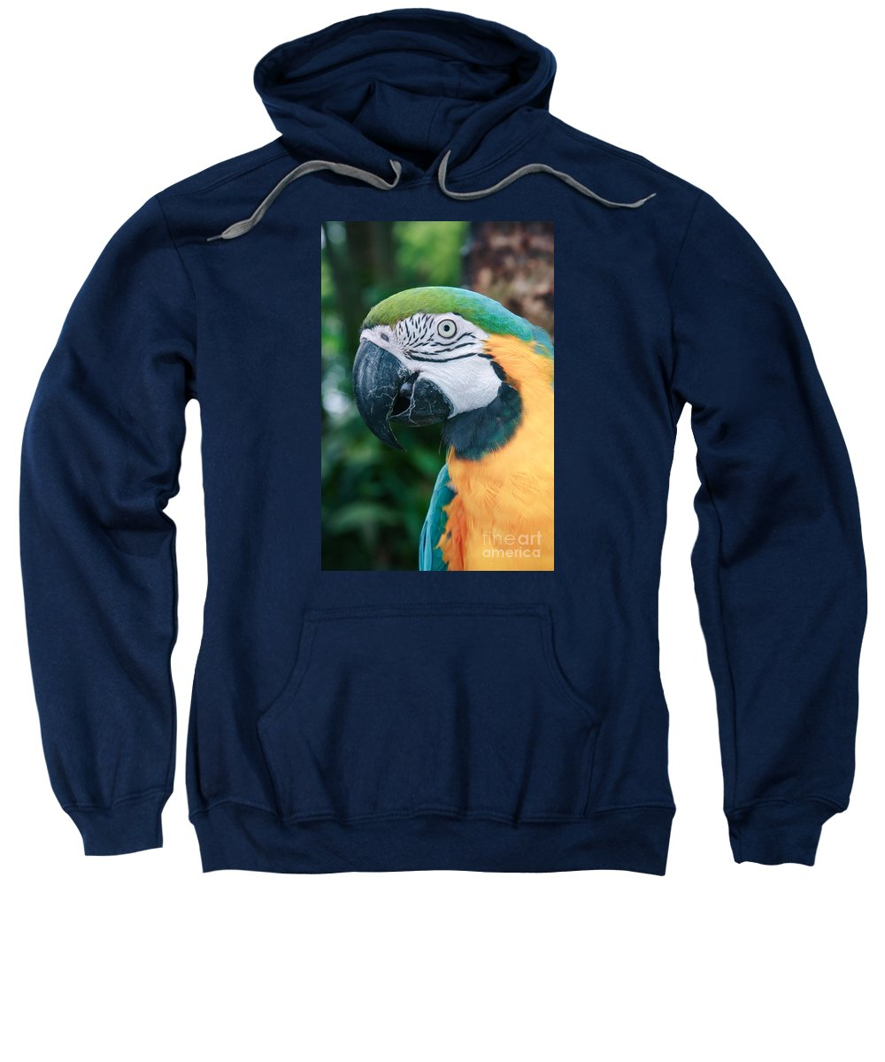 Hawaii Sweatshirt featuring the photograph The Poetry Of Nature by Sharon Mau