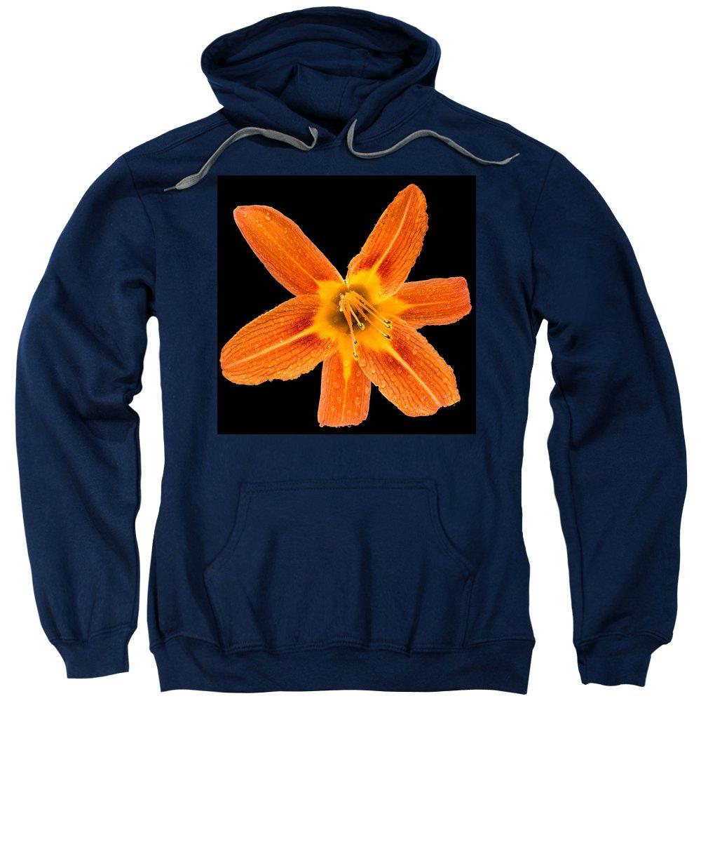 Flower Sweatshirt featuring the photograph This Orange Lily by Steve Gadomski