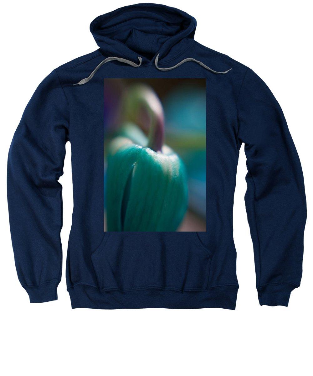 Tulip Sweatshirt featuring the photograph Tulip Bud by Natalie Rotman Cote