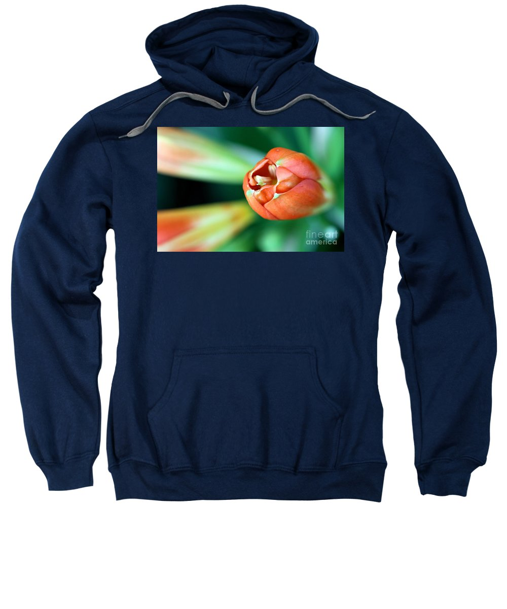 Flower Sweatshirt featuring the photograph Waiting To Bloom by Ashley M Conger