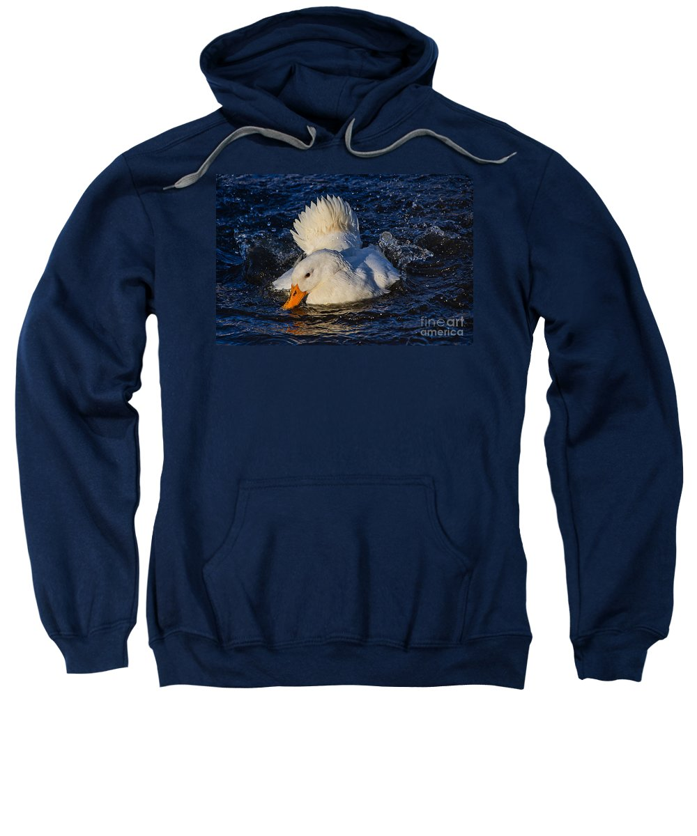 Duck Sweatshirt featuring the photograph White Duck 3 by Susie Peek