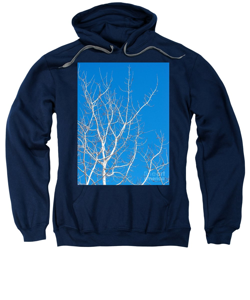 Winter Sweatshirt featuring the photograph Winter by Ann Horn