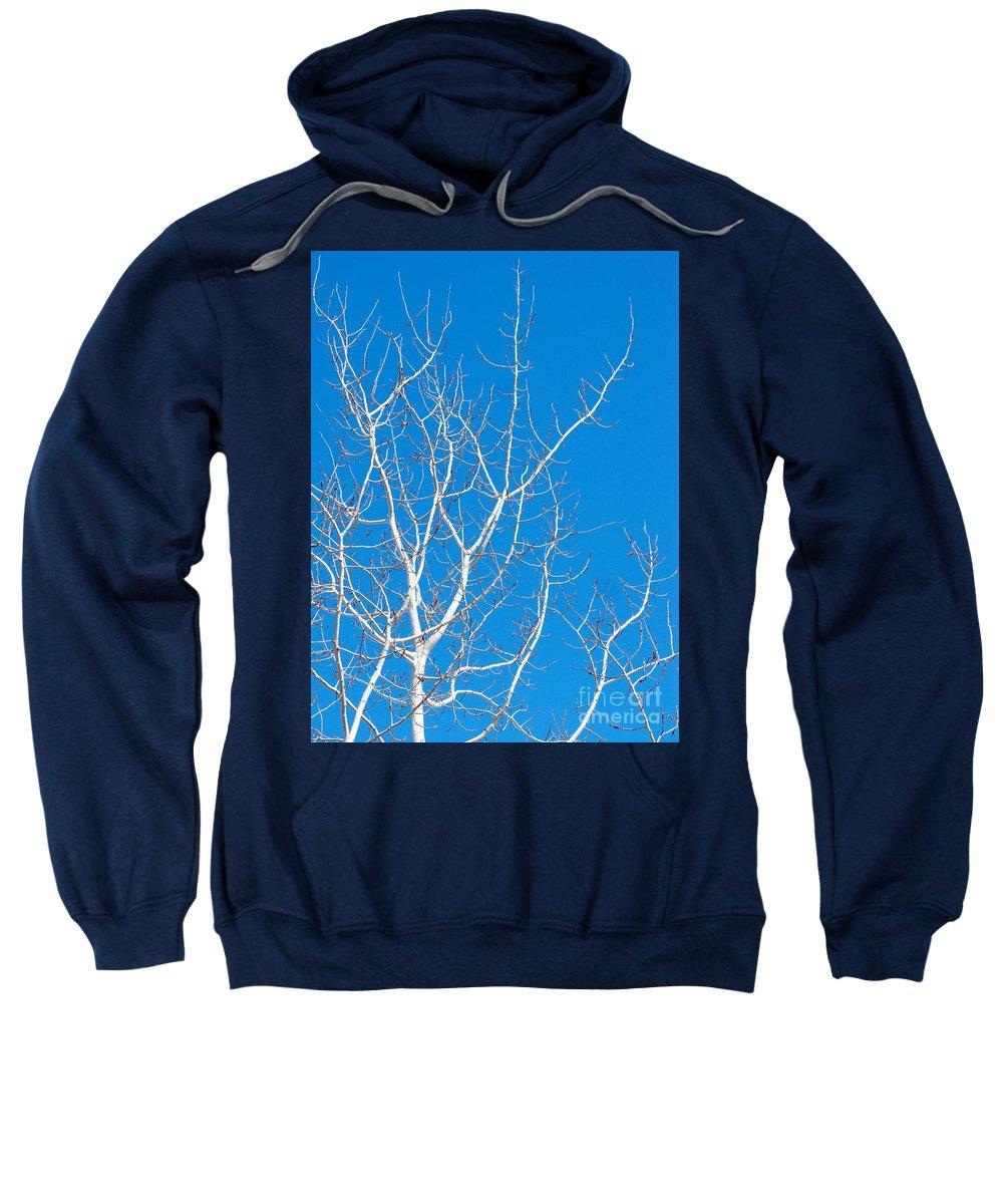 Winter Sweatshirt featuring the photograph Winter by Ann Horn