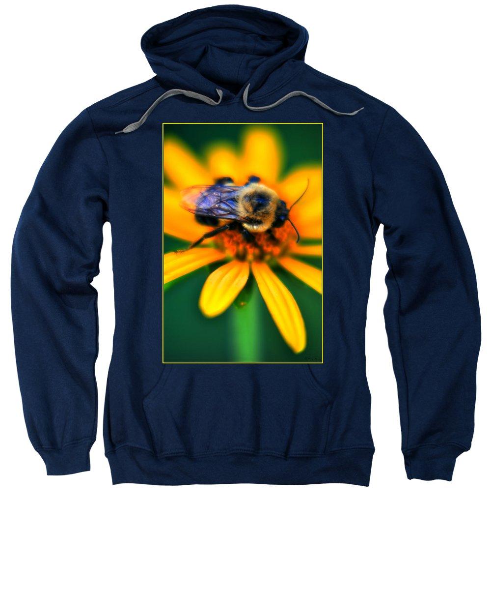Sweatshirt featuring the photograph 006 Sleeping Bee Series by Michael Frank Jr